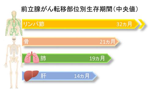 前立腺がん転移部位別生存期間(中央値)_3